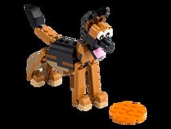 LEGO - 30578 LEGO Creator Alman Kurdu