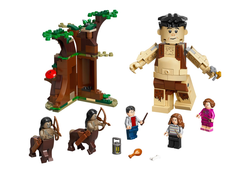 LEGO - 75967 Forbidden Forest: Umbridge's Encounter